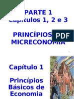 TEC1 ADM Parte1 Cap1, 2 e 3