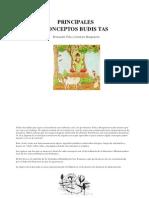 PRINCIPALES CONCEPTOS BUDIS TAS