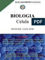 CLASE 5 BIOLOGIA celula