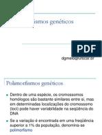 aula_polimorfimos_DGM