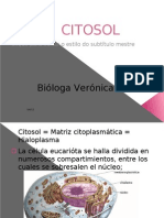 CITOSOL (clase 3)