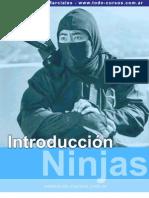 Intoducción al Ninjitsu