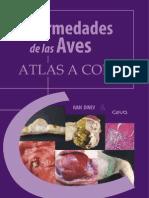 Atlas Enfermedades de Las Aves