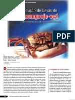 Caranguejo113