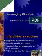 17-Infertilidad en Equinos