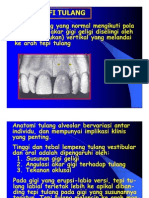 Pe 142 Slide Topografi Tulang