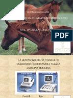 Presentacion_Ultrasonografia[1]
