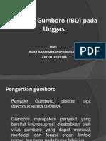 Penyakit Gumboro (IBD) Pada Unggas