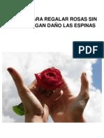 Trucos Para Regalar Rosas Sin Que Te Hagan Danyo Las Espinas