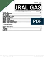 [MUDI 2008] Natural Gas DA -- Finished