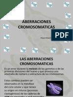 aberraciones cromosomaticas