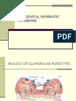 Congenital Nephrotic Syndrome