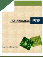 PSEUDOMONAS MICROBIOLOGIA