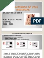 traumatismosdeviasurinarias-090817015614-phpapp01