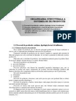 CAPITOLUL 2 Structura de productie si conceptie a unei întreprinderi de productie