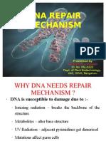 Dhanu DNA Repair