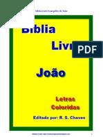 Bíblia Livre Evangelho de João R S Chaves