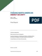 NAFI Final Report 2004