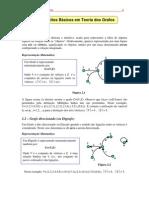 Conceitos Basicos em Teoria dos Grafos