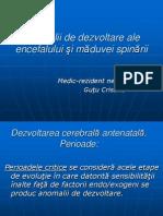 Anomalii de Dezvoltare Ale Encefalului Si Maduvei Spinarii (1)