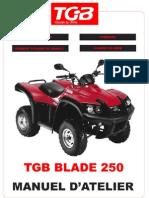 Manuel Atelier Blade Tgb 250