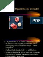 LB-Activación