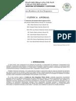 Clinica Animal
