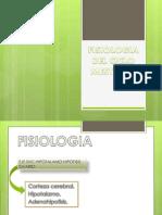 Fisiologia Del Ciclo Mestrual Rotacion 3