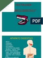 adigestivo