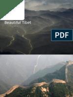 Beau Ti Full Tibet