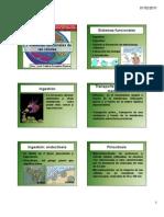sistemas funcionales de las c+®lulas [Modo de compatibilidad]
