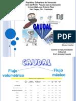 CAUDAL-Control e Instrumentacion