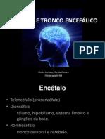 CÉREBRO E TRONCO ENCEFÁLICO 2