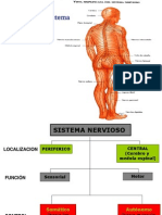 anatoma-snc1-100827213531-phpapp01