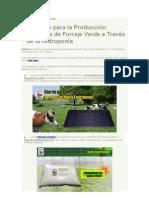 Guía para la producción de FVH