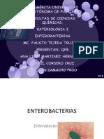 enterobacterias 3[1][1][1][1]