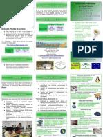 IES Fuente Grande - Alcalá del Valle - CFGM de Sistemas Microinformáticos y Redes