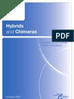 Hybrids Report