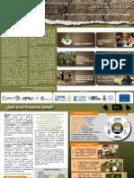 Boletín Geñoï 1 - ACF - Bolivia