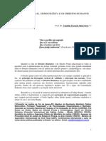 Justica Penal Democratic A e Os Direitos Humanos