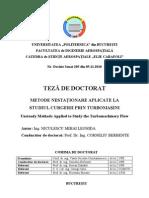Teza[1]mihai_niculescu