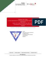 Garay-Cultura Organizacional,Potencial Activo Estrategico