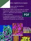 Les Maladies Staphylococciques