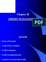 Chapter 28 Credit Management