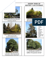 Keizer Trees of History and Interest