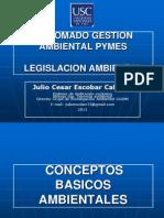 Diplomado gestión ambiental  pymes 2011 Julio Escobar