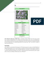 indexoff.php.pdf