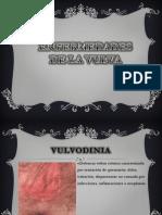 Enfermedades de La Vulva
