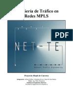 Ingenieria de Trafico en Redes MPLS