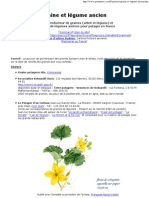 graines Bio ancienne Semences sans ogm sans pesticides naturelles